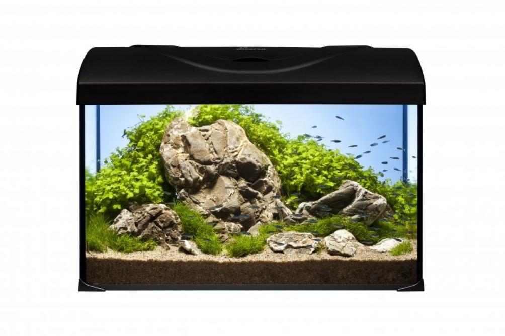 Skleněná akvária